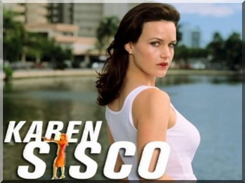 Karen Sisco, elmore leonard, carla gugino, robert foster, policier, histoire des séries américaines, castle, kate beckett
