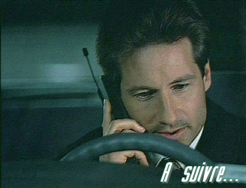 fox mulder, dana scully, david duchovny, gillian anderson, x-files, science-fiction, conspiration, vince gilligan, tony schaloub, steven williams, walter s. skinner