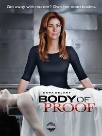 body of proof,dana delany,dr house,the mentalist,simon baker,sherlock holmes,séries policières,histoire des séries américaines